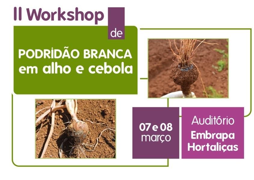 Workshop apresentará os primeiros resultados de ações de prevenção contra a podridão branca