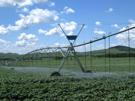 Lavoura-de-irrigada